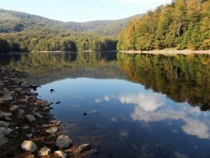 lake-2092307_640